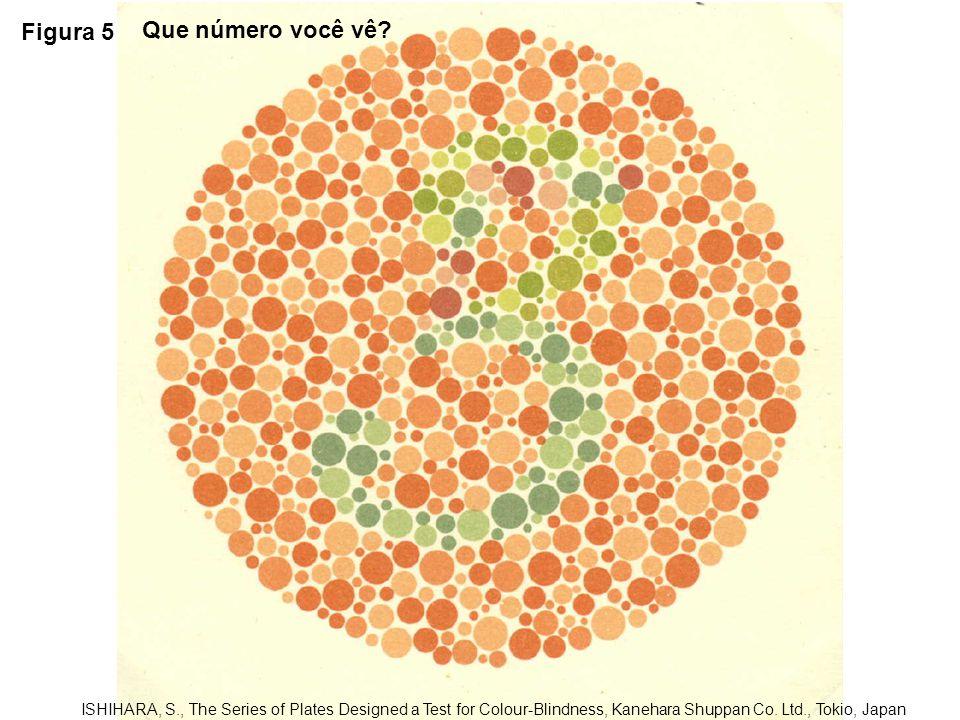 Figura 5 Que número você vê