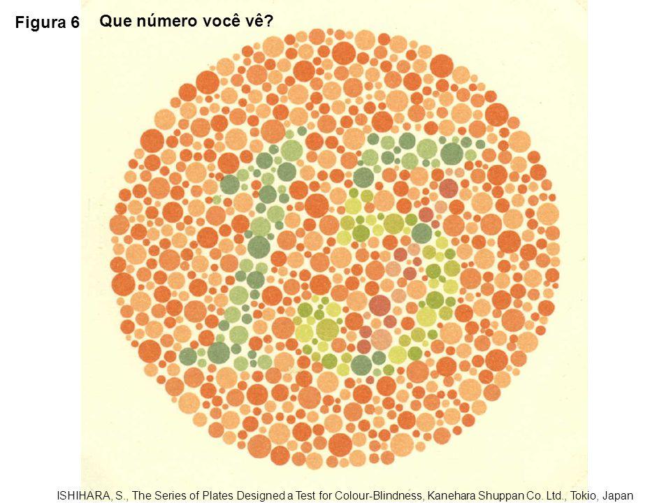 Figura 6 Que número você vê
