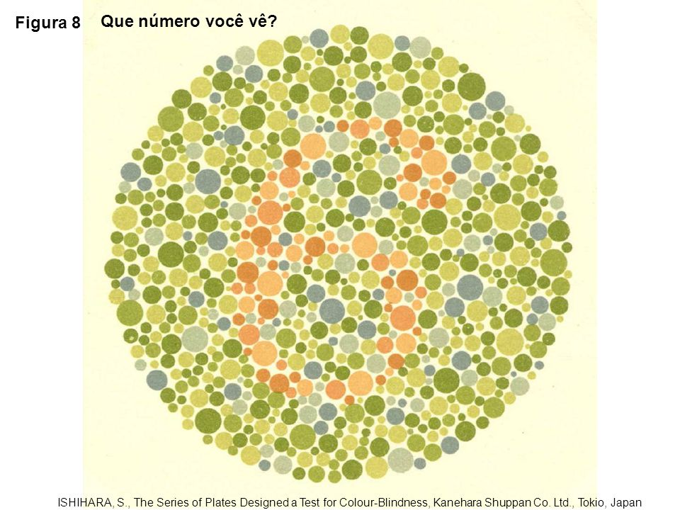 Figura 8 Que número você vê