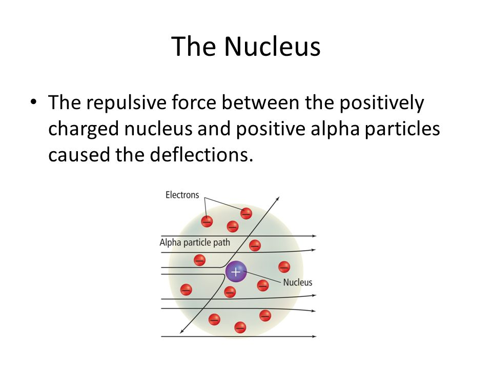 The Nucleus The repulsive force between the positively charged nucleus and positive alpha particles caused the deflections.