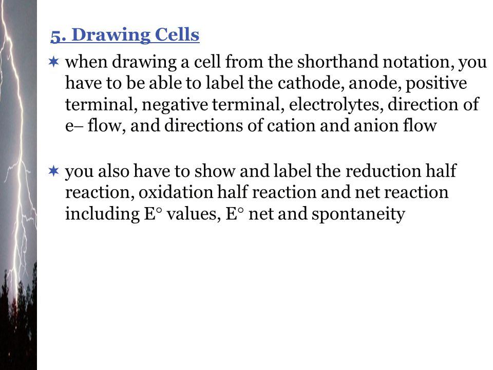 5. Drawing Cells
