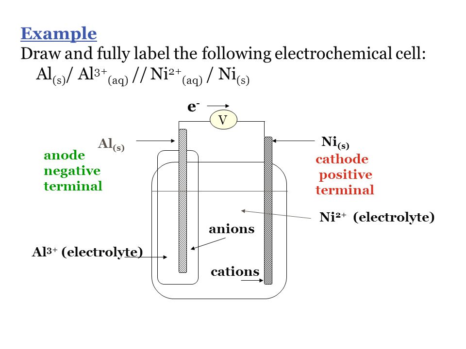 Draw and fully label the following electrochemical cell: