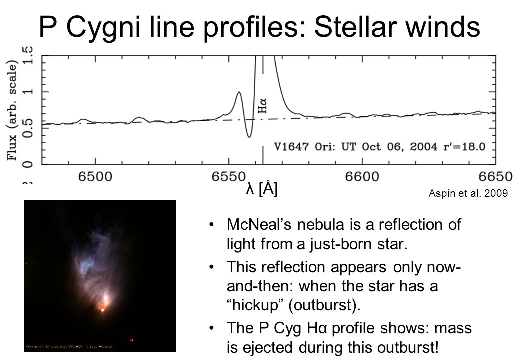 P Cygni line profiles: Stellar winds