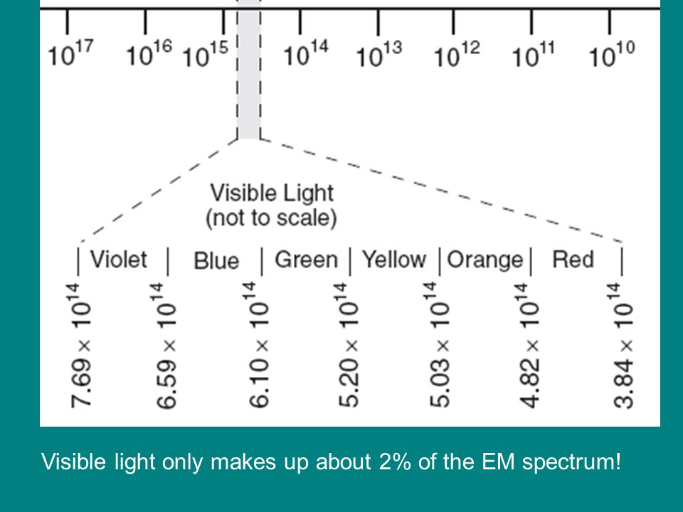 Visible light only makes up about 2% of the EM spectrum!