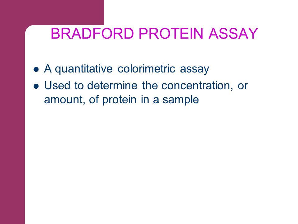 BRADFORD PROTEIN ASSAY