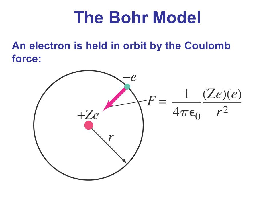 The Bohr Model An electron is held in orbit by the Coulomb force: