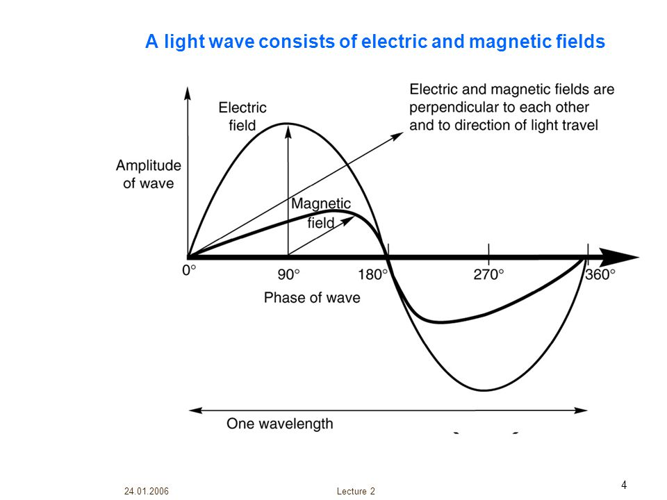 A light wave consists of electric and magnetic fields