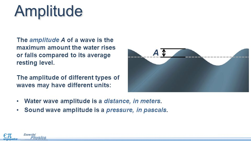 Amplitude The amplitude A of a wave is the maximum amount the water rises or falls compared to its average resting level.