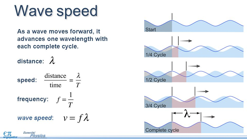 Wave speed As a wave moves forward, it advances one wavelength with each complete cycle. distance: