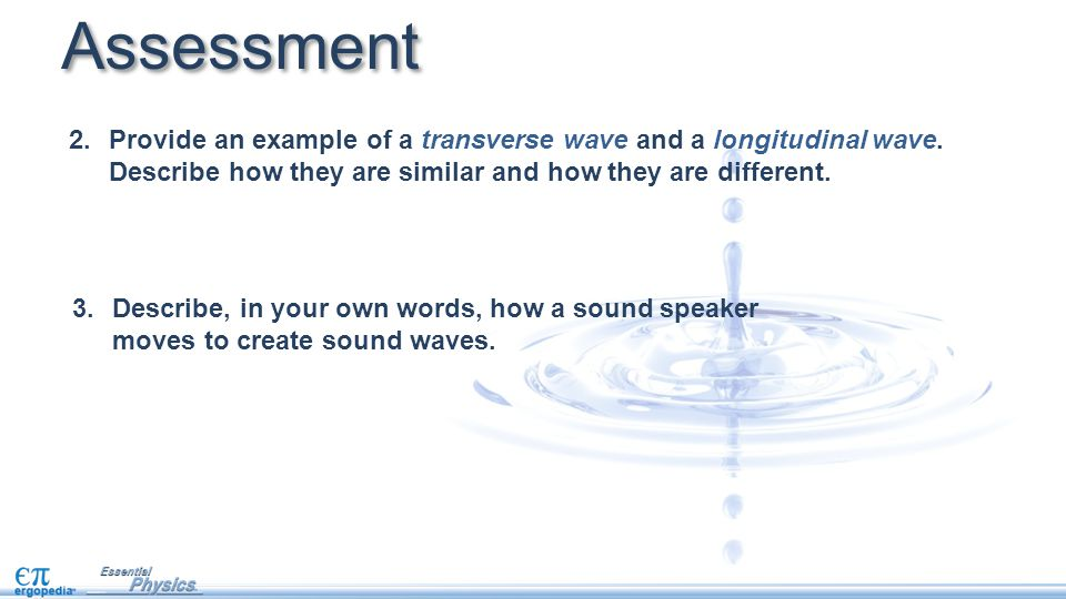 Assessment Provide an example of a transverse wave and a longitudinal wave. Describe how they are similar and how they are different.
