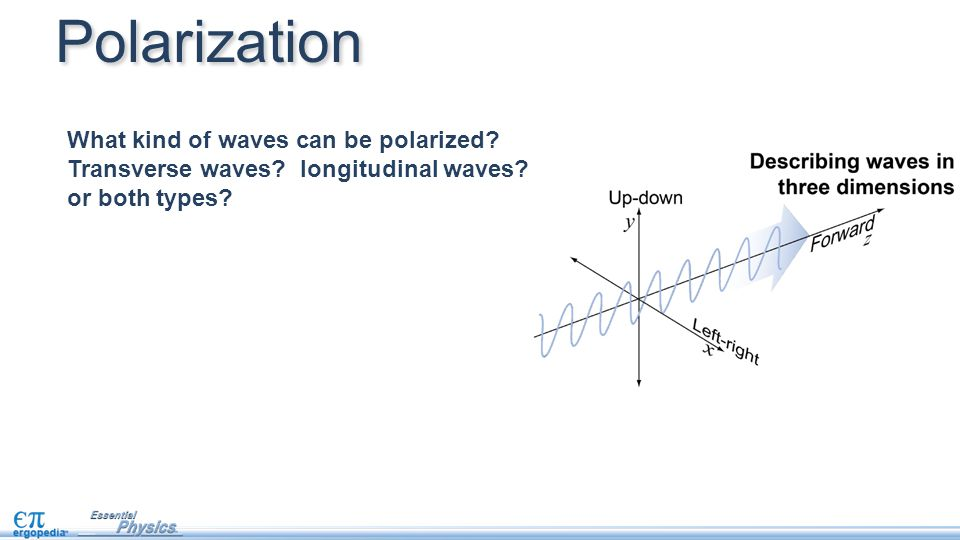 Polarization What kind of waves can be polarized. Transverse waves.