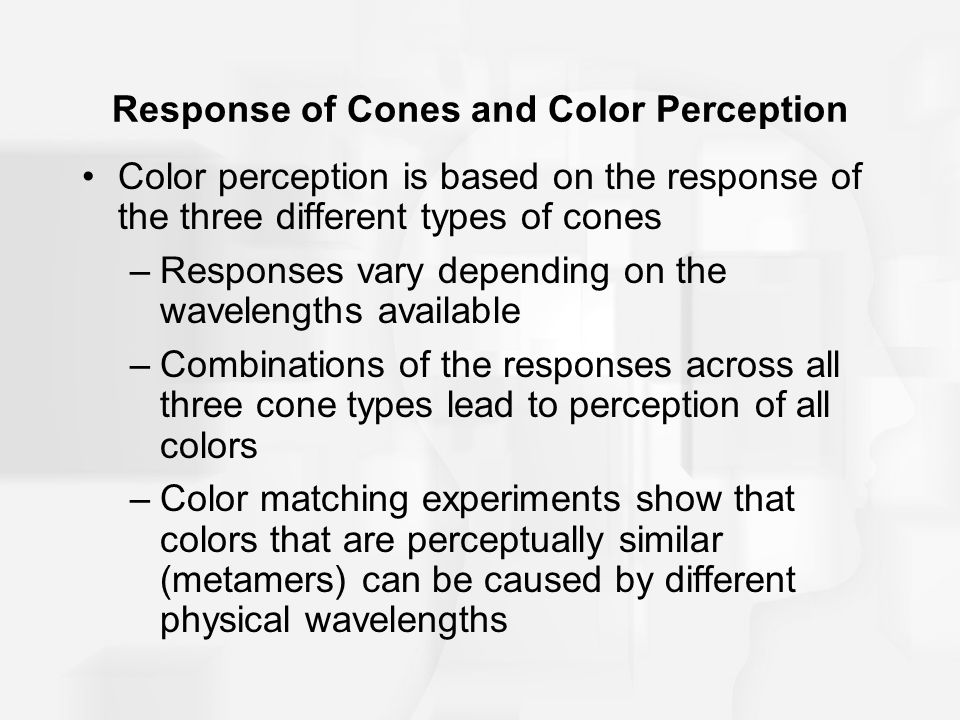 Response of Cones and Color Perception