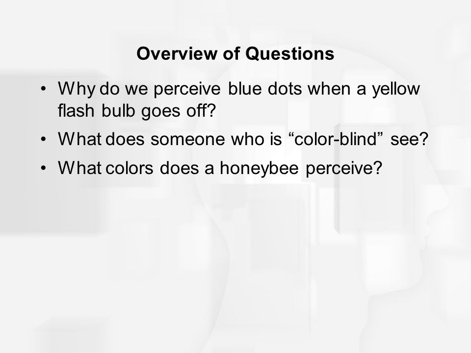 Overview of Questions Why do we perceive blue dots when a yellow flash bulb goes off What does someone who is color-blind see