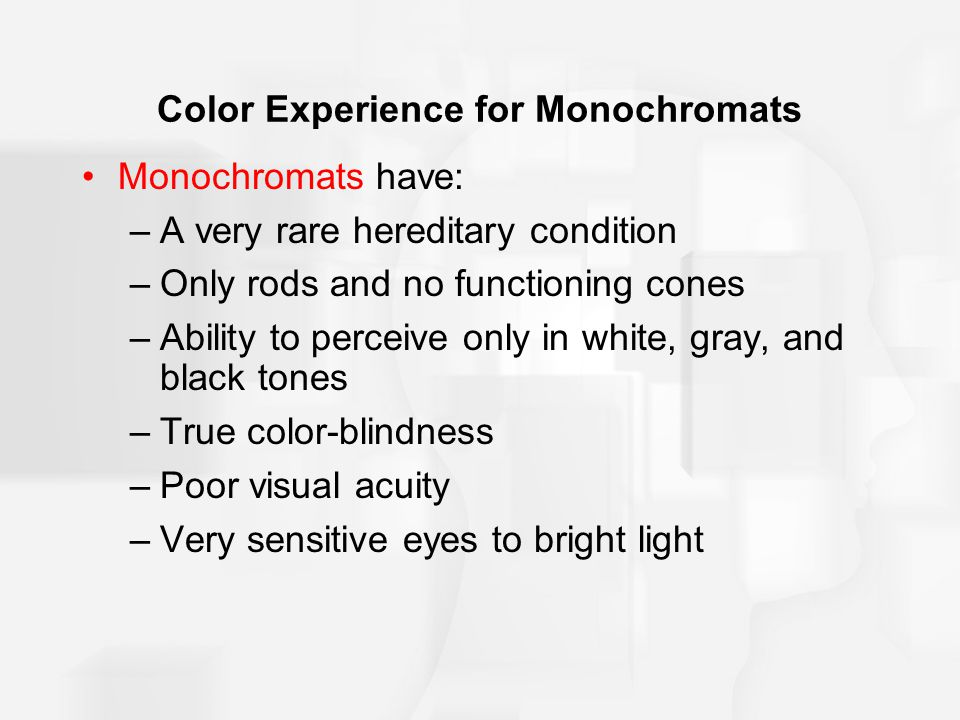 Color Experience for Monochromats