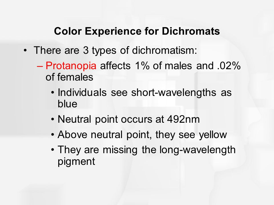 Color Experience for Dichromats