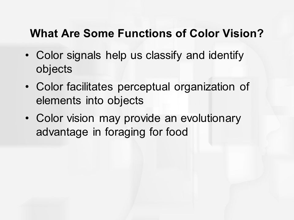 What Are Some Functions of Color Vision