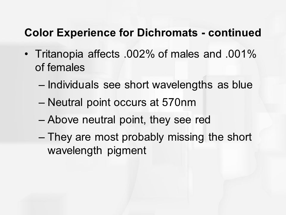 Color Experience for Dichromats - continued