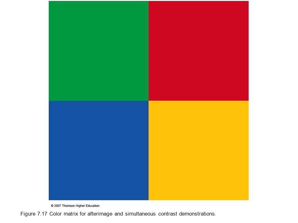 Figure 7.17 Color matrix for afterimage and simultaneous contrast demonstrations.