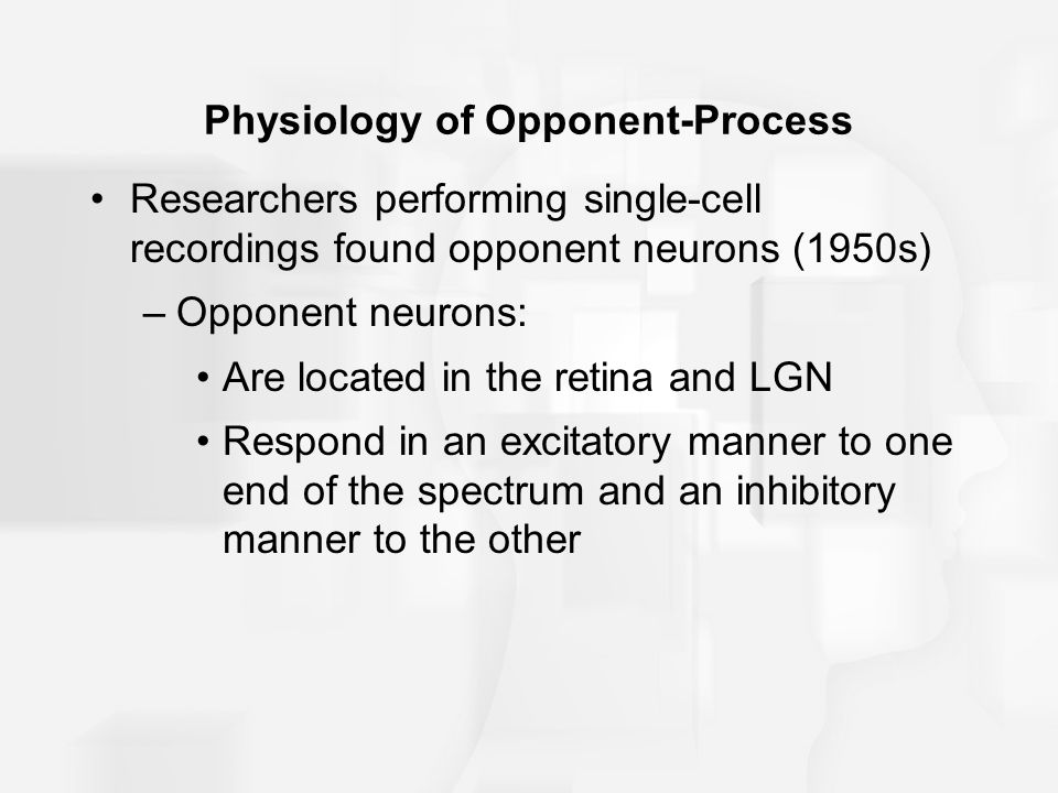 Physiology of Opponent-Process
