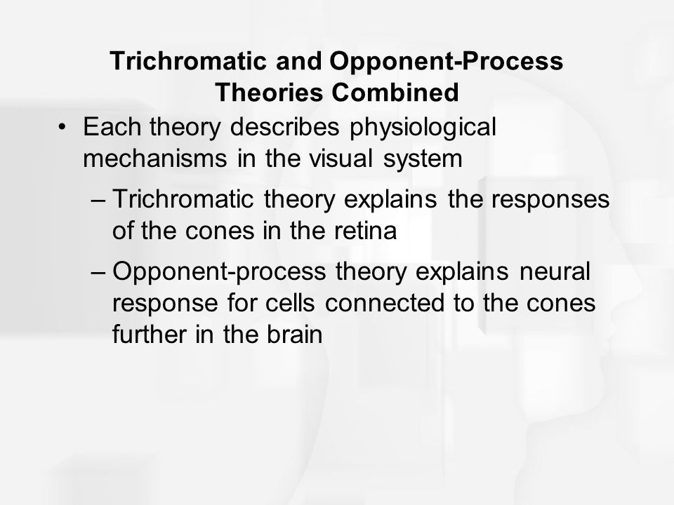 Trichromatic and Opponent-Process Theories Combined