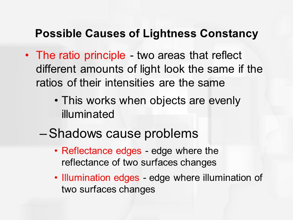 Possible Causes of Lightness Constancy