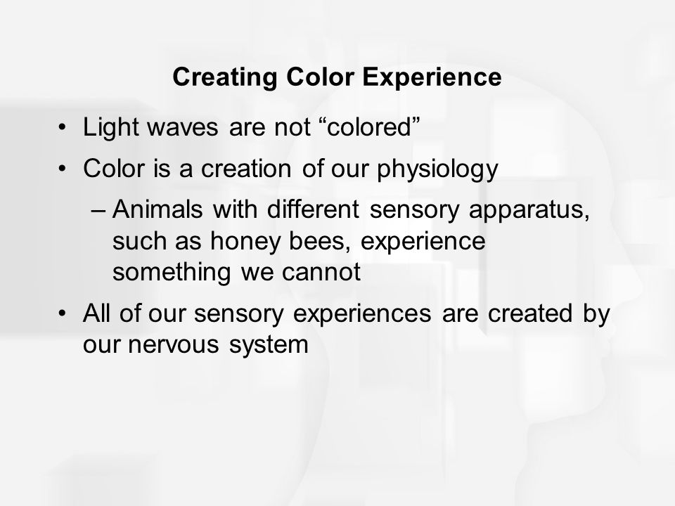 Creating Color Experience
