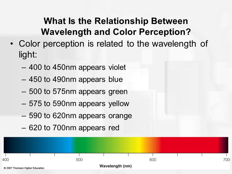 What Is the Relationship Between Wavelength and Color Perception