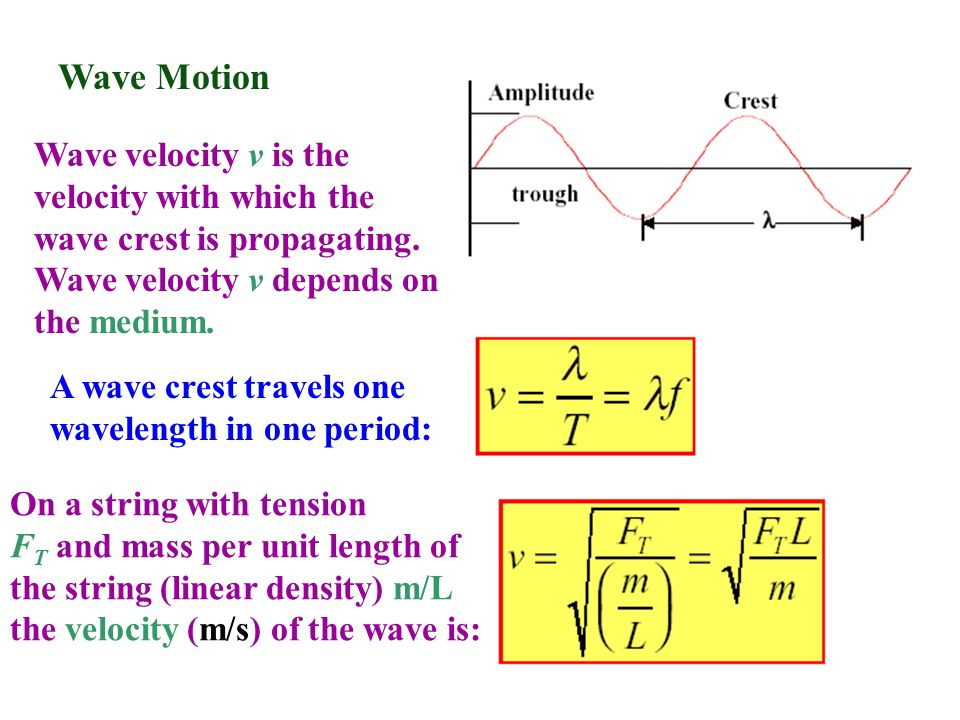 Wave Motion Wave velocity v is the velocity with which the