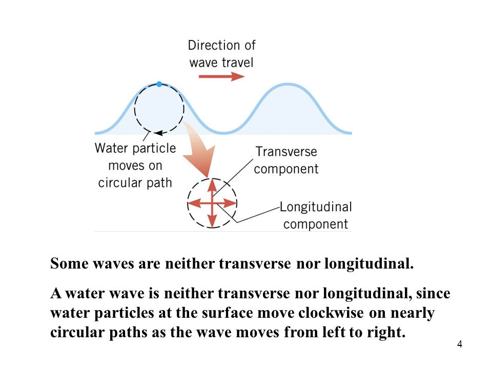 Some waves are neither transverse nor longitudinal.