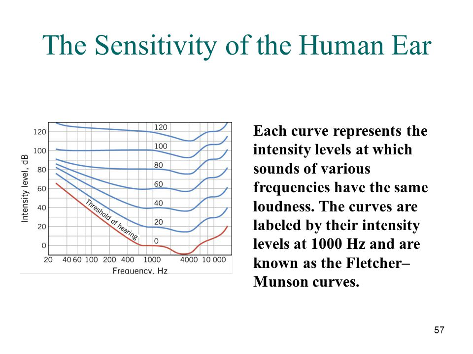 The Sensitivity of the Human Ear