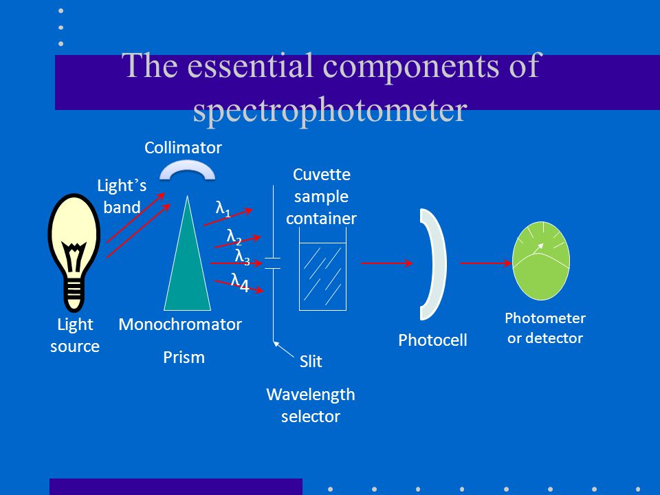 The essential components of spectrophotometer
