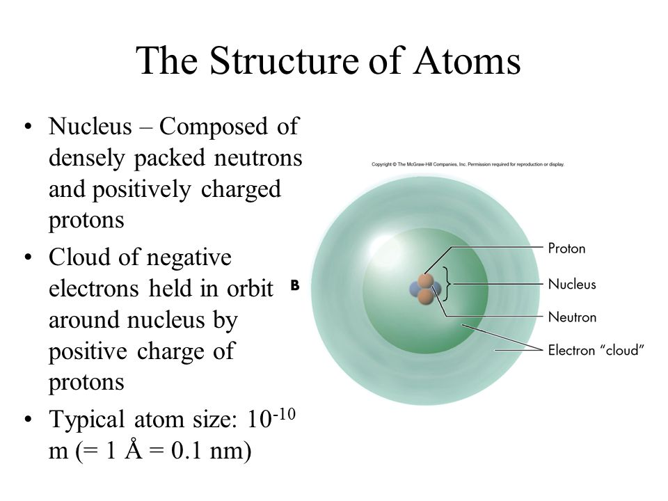 The Structure of Atoms Nucleus – Composed of densely packed neutrons and positively charged protons.