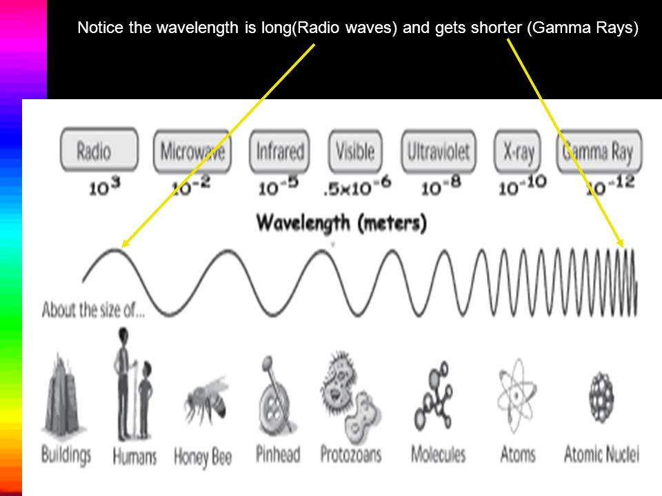 Notice the wavelength is long(Radio waves) and gets shorter (Gamma Rays)