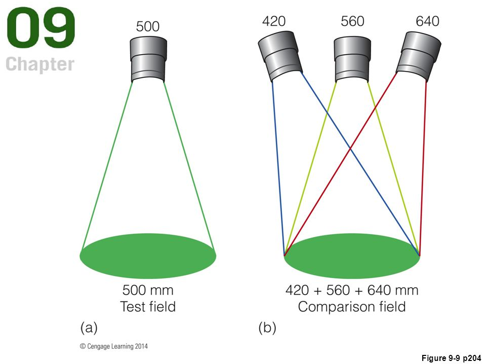 Figure 9.9 In a color-matching experiment, the observer adjusts the amount of three wavelengths in one field (right) so that it matches the color of the single wavelength in the other field (left).