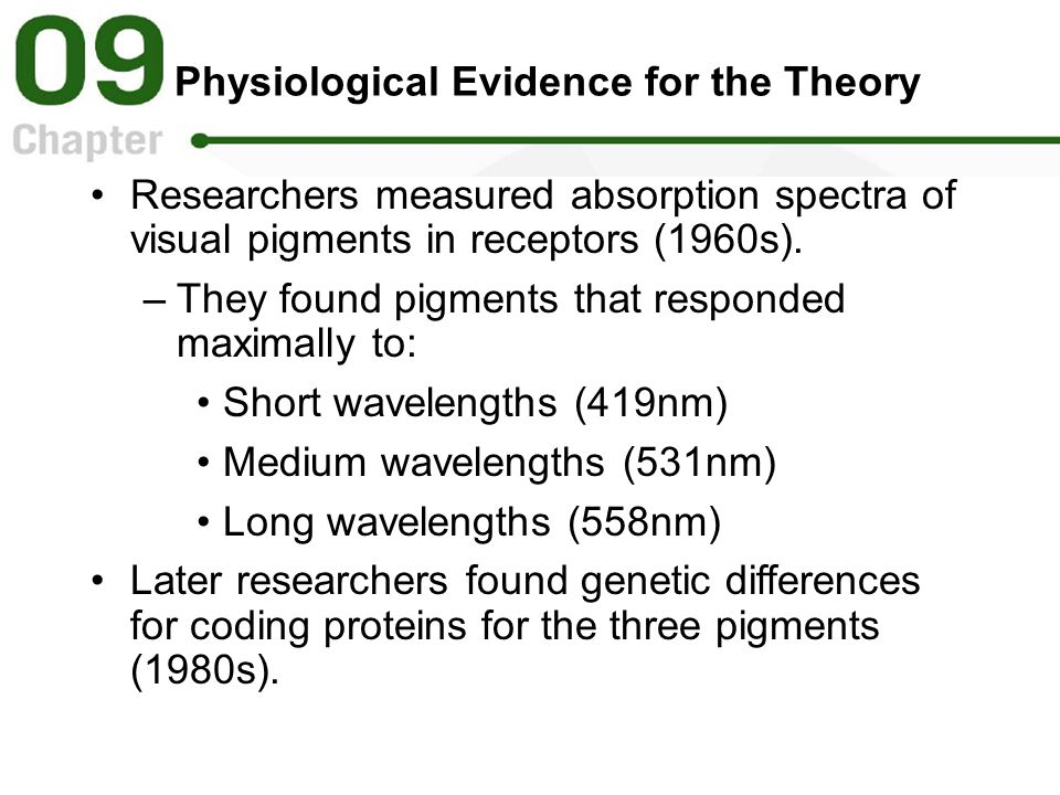 Physiological Evidence for the Theory