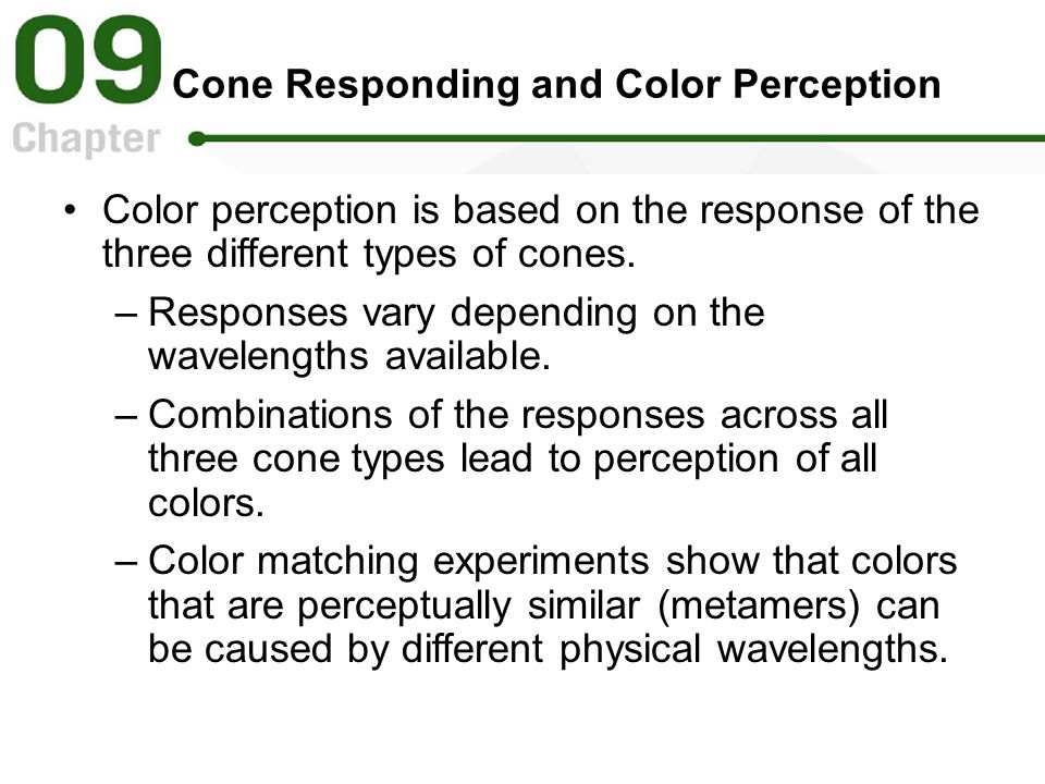 Cone Responding and Color Perception