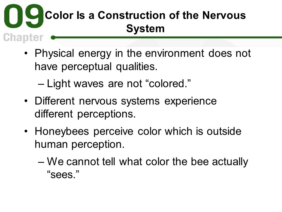 Color Is a Construction of the Nervous System