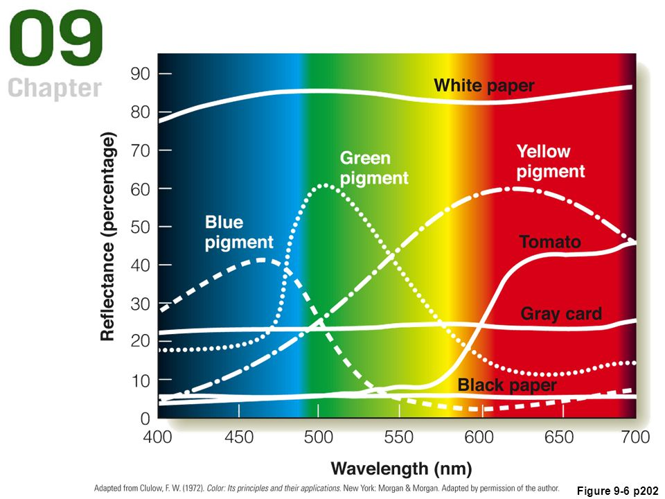 Figure 9.6 Reflectance curves for surfaces that appear white, gray, and black, and for blue, green, and yellow pigments and a red tomato.