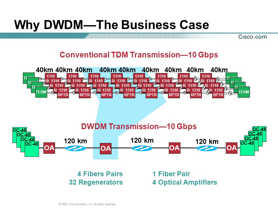 Why DWDM—The Business Case
