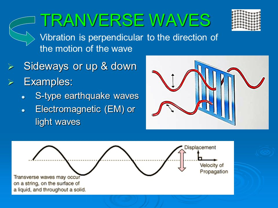 TRANVERSE WAVES Sideways or up & down Examples: