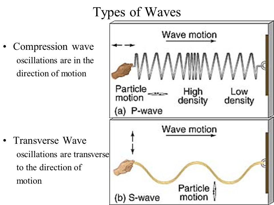 Types of Waves Compression wave Transverse Wave