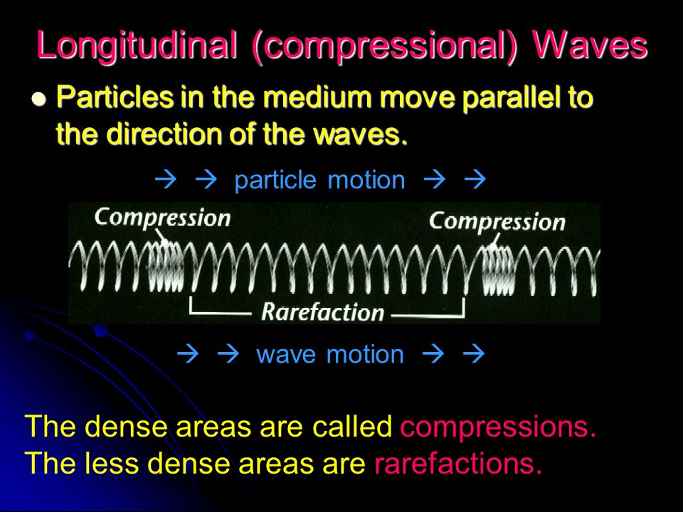 Longitudinal (compressional) Waves