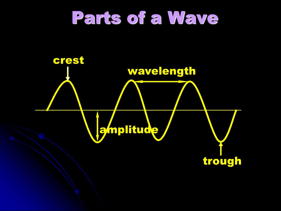 Parts of a Wave crest wavelength amplitude trough