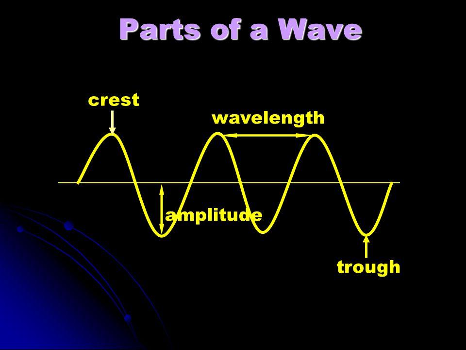Parts of a Wave crest wavelength amplitude trough