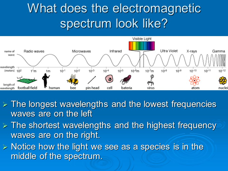 What does the electromagnetic spectrum look like