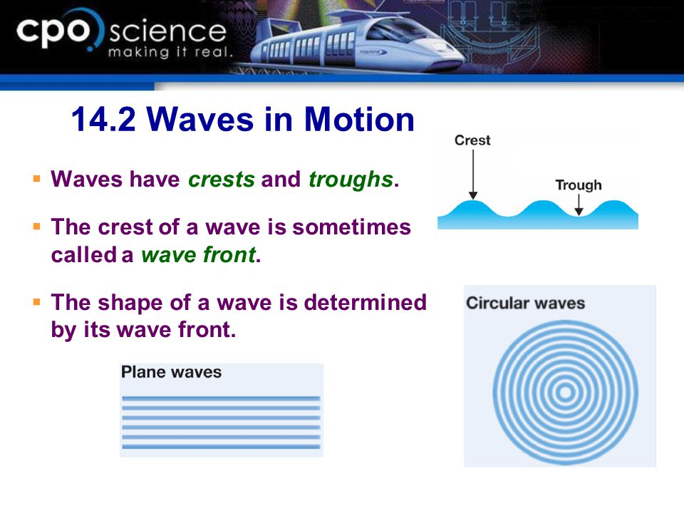 14.2 Waves in Motion Waves have crests and troughs.