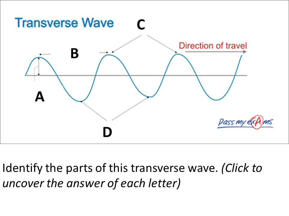 C B A A D Identify the parts of this transverse wave. (Click to uncover the answer of each letter)