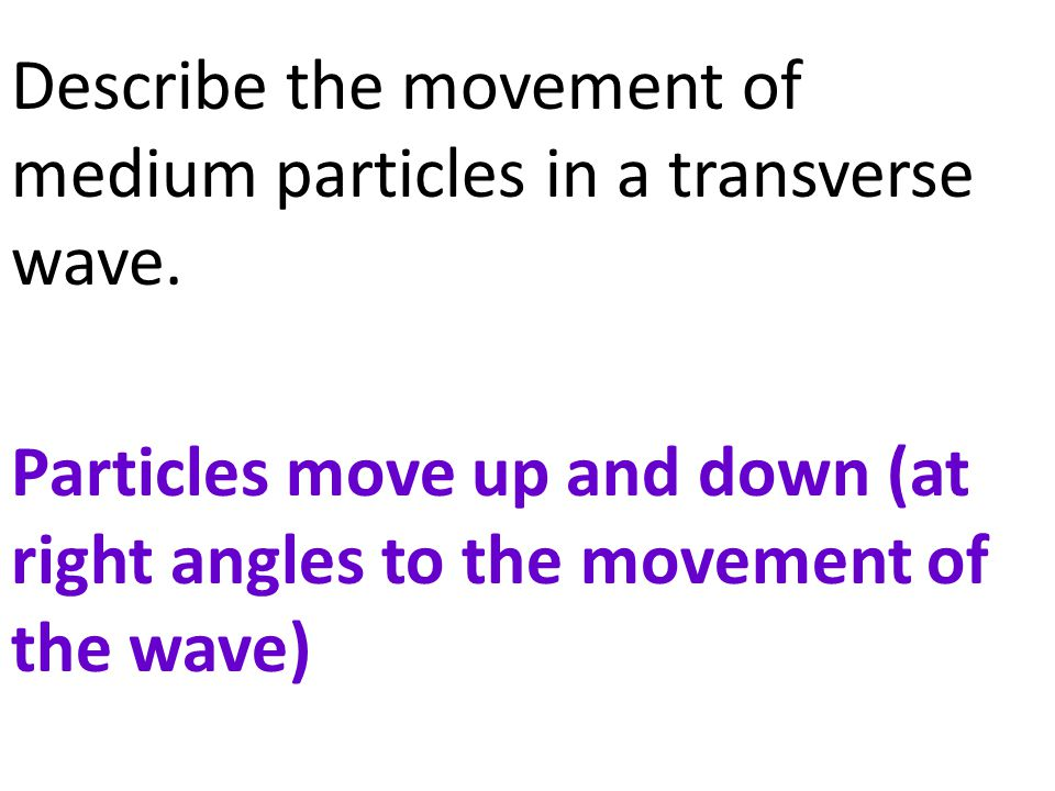 Describe the movement of medium particles in a transverse wave
