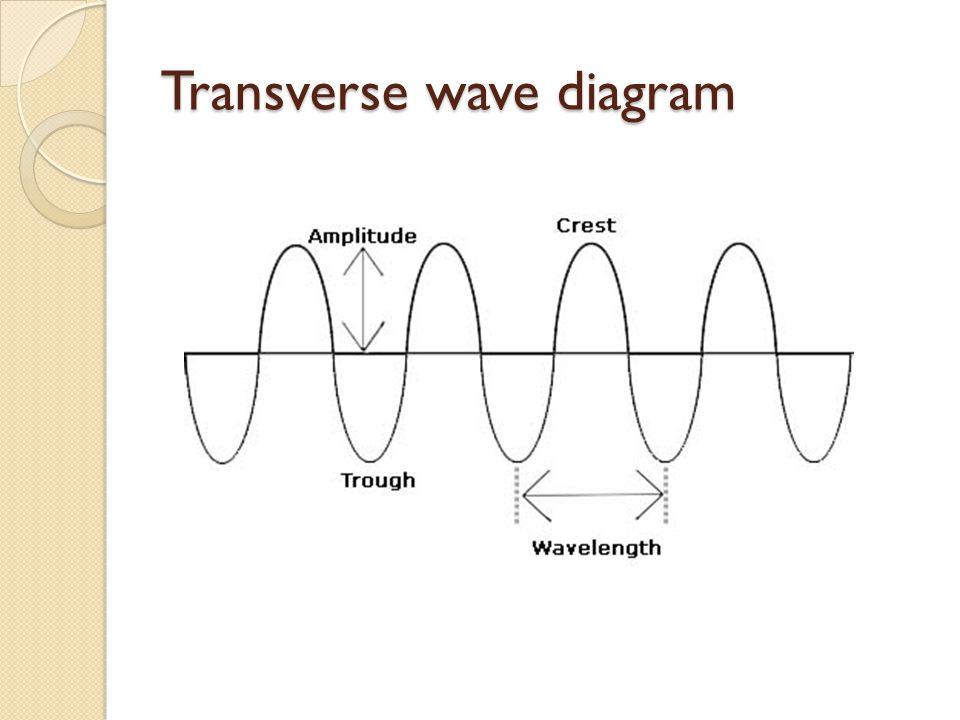 Transverse wave diagram