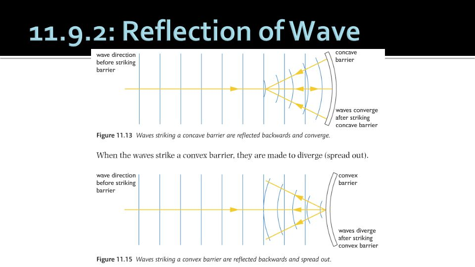 11.9.2: Reflection of Wave